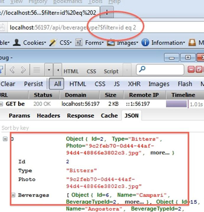 screenshot of oData request and result