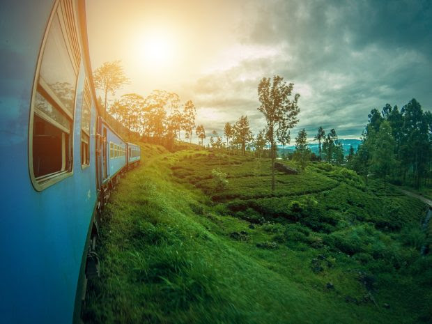 Things to do on a Family Trip to Sri Lanka