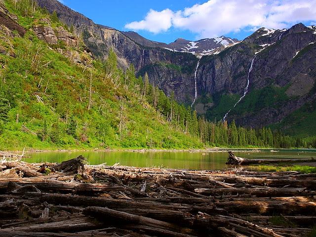 IMG_2485 Avalanche Lake