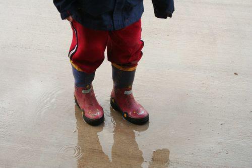 Rainyday001web