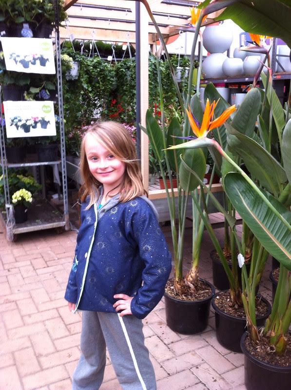 Famiflora et frikadel