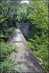Dellwood Park Dam