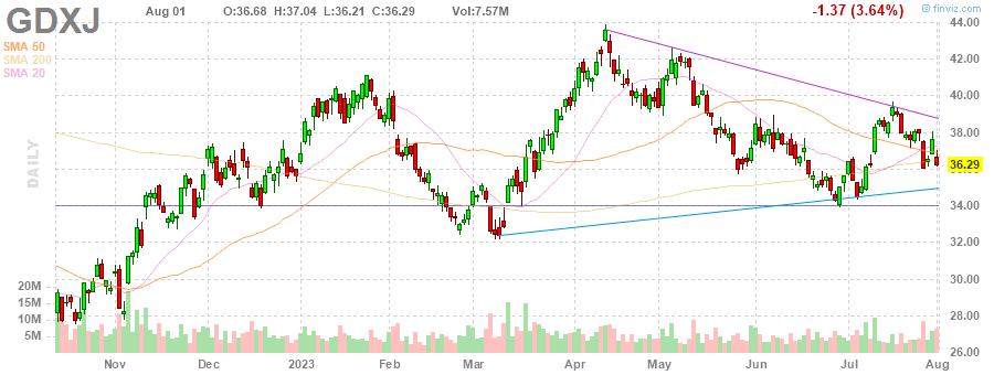 GDXJ Market Vectors Junior Gold Miners ETF daily Stock Chart