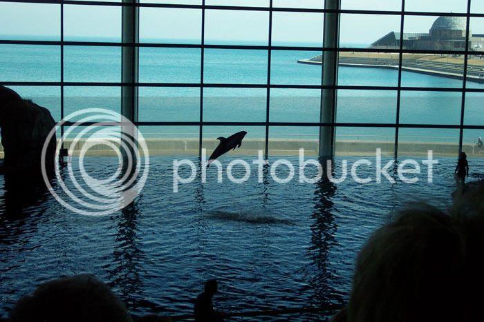 Top Ten Aquariums in the US