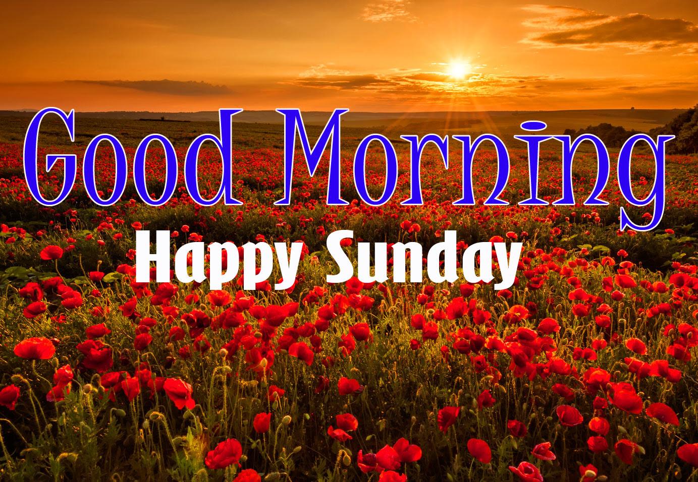 Sunday Good Morning Wishes Photo HD