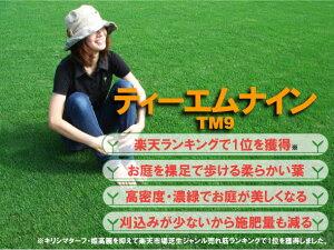 【芝生】ティーエムナイン(高麗芝) TM9は刈り込みと施肥回数が少ない手入れが楽で見た目もキレ...