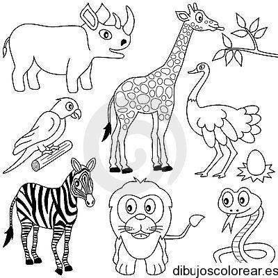 Dibujo De Animales De La Selva