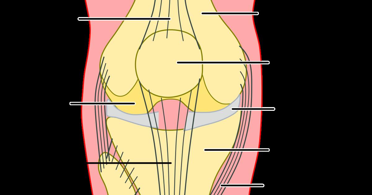 Instabile Kniescheibe Symptome