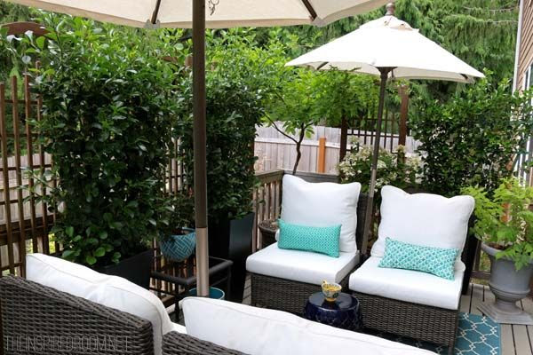 Small backyard ideas before after