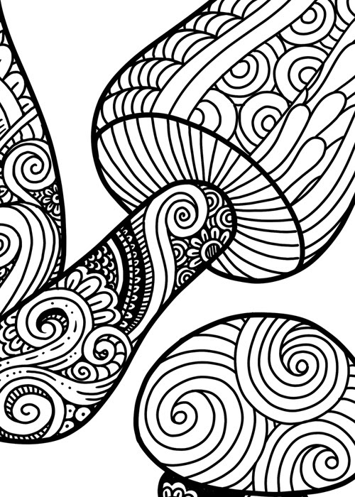 Mushrooms Doodle Art Adult Coloring Page | Karyn Lewis ...