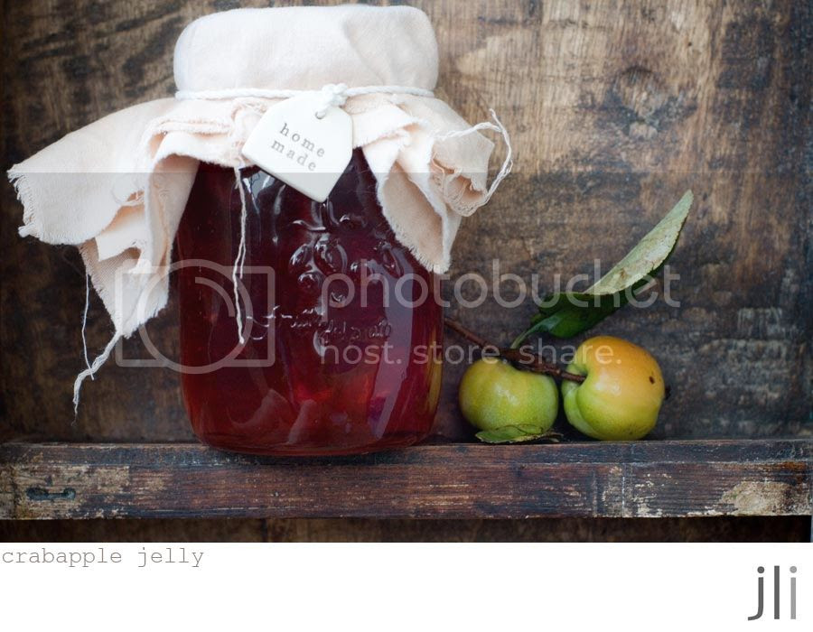 crabapple jelly photo blog-3_zps1645007b.jpg