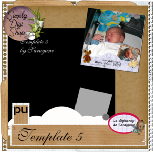 template5preview_19b709d