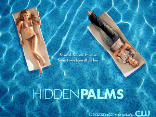 Immediately obsessed with Hidden Palms on Netflix.