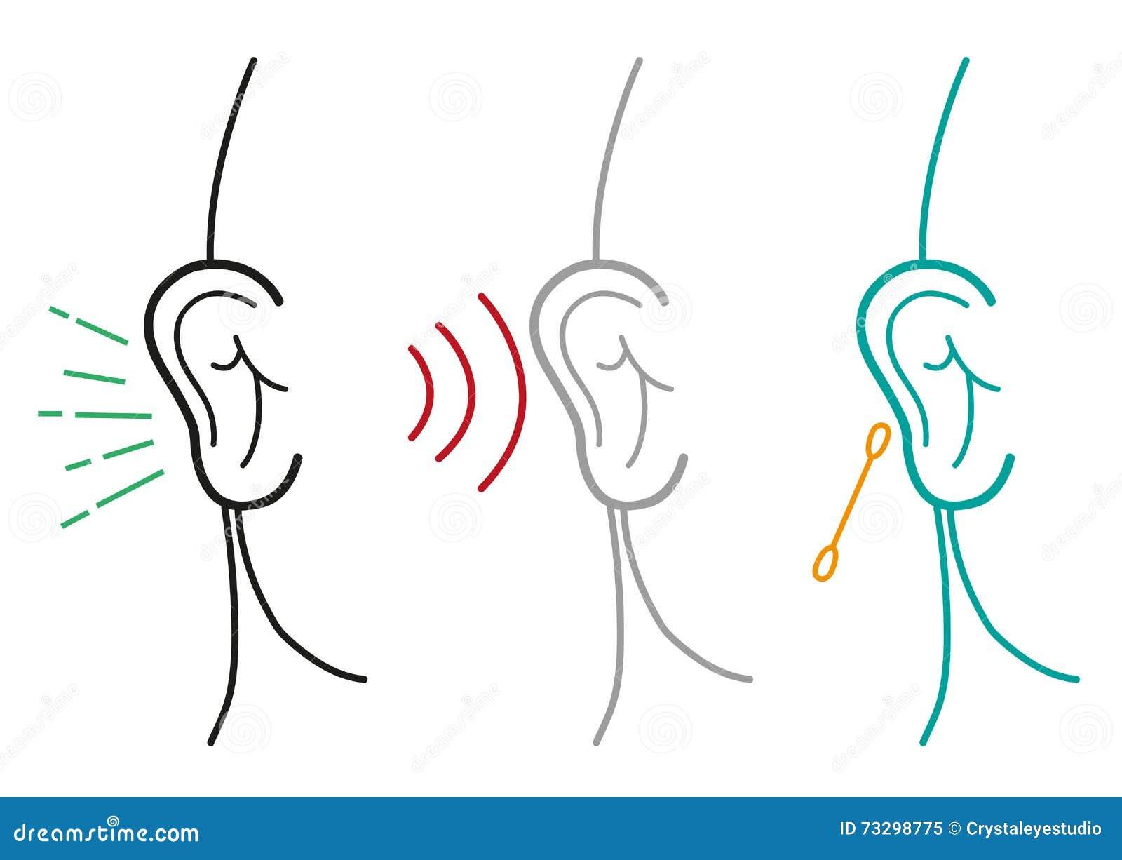 Set Of Human Ear Illustration In Outline Art Style. Editable Clip ...