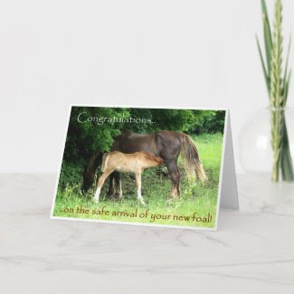 New Foal Congratulations Card card