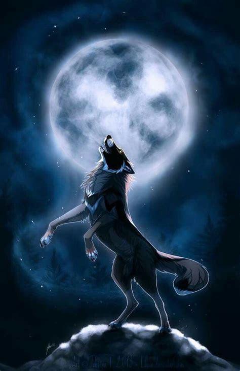 howling wolf  wolf wolf wolf wallpaper anime wolf