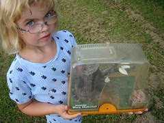 Isabelle and her crickets