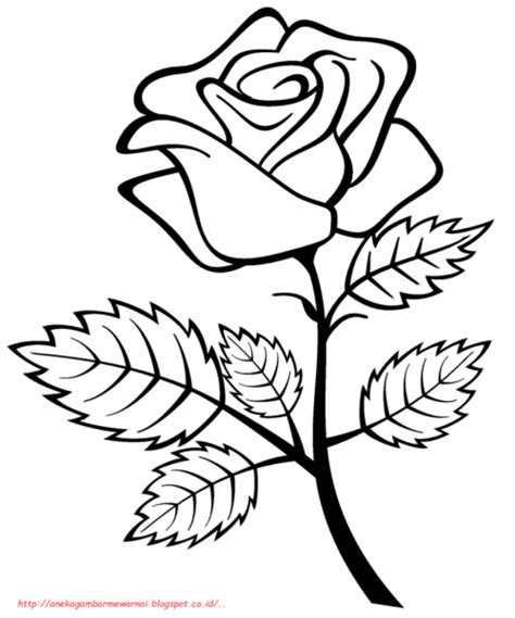 94+ Gambar Bunga Untuk Digambar Paling Cantik