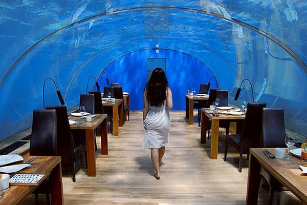 under sea crazy restaurant4 World's First Ever Undersea Restaurant   Ithaa