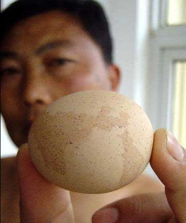 china-egg-worldmap Map of the World Egg Laid by Hen in China picture