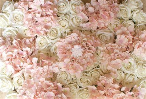blush pink  cream rose hydrangea floral backdrop flower