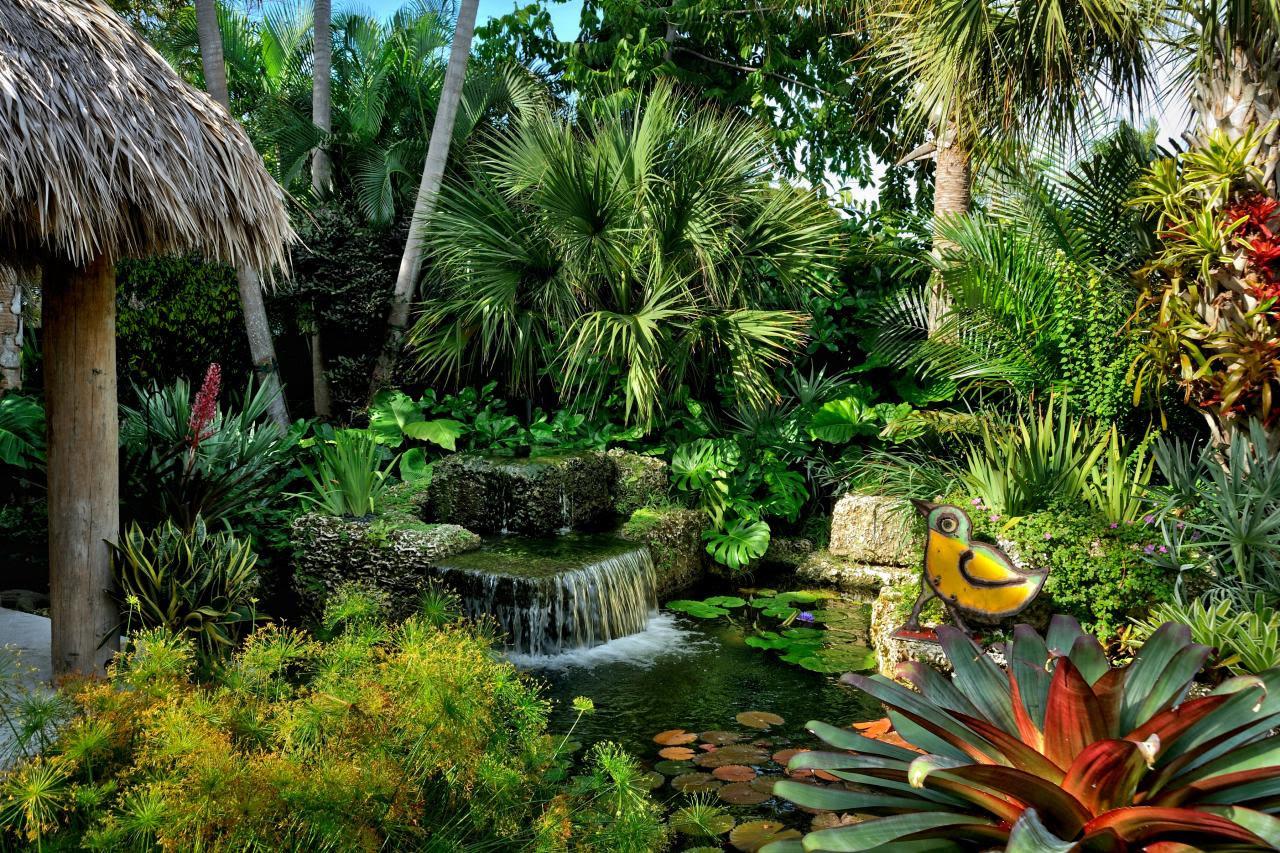 Tropical Landscaping Design Ideas | HGTV