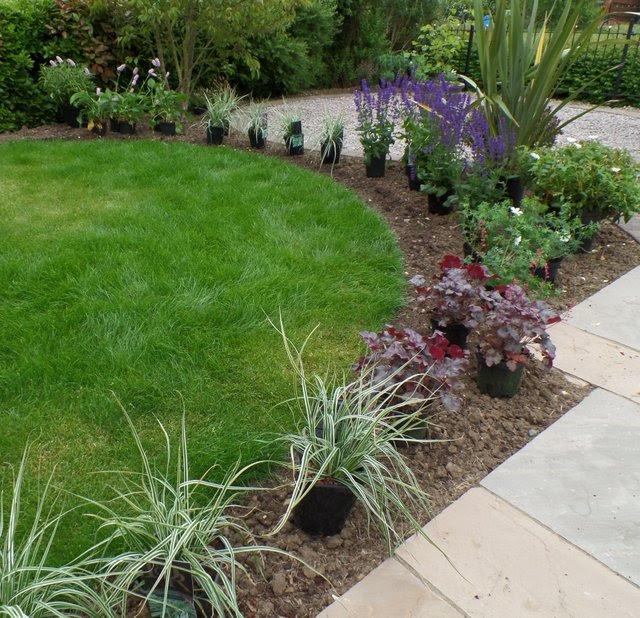 Advice Hub Garden Designer Plantswoman Bel Grierson Loughborough Leicestershire