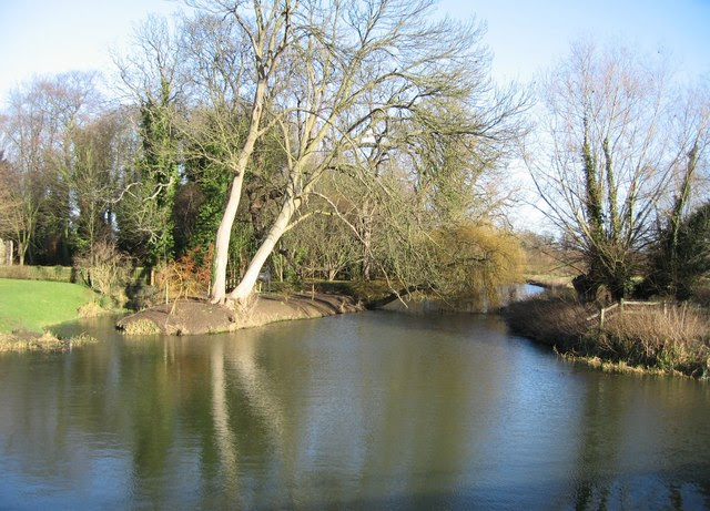 File:Grantchester Mill Pond - geograph.org.uk - 649084.jpg