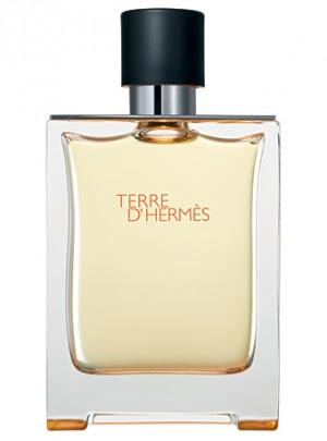 Terre d'Hermes Hermes Masculino