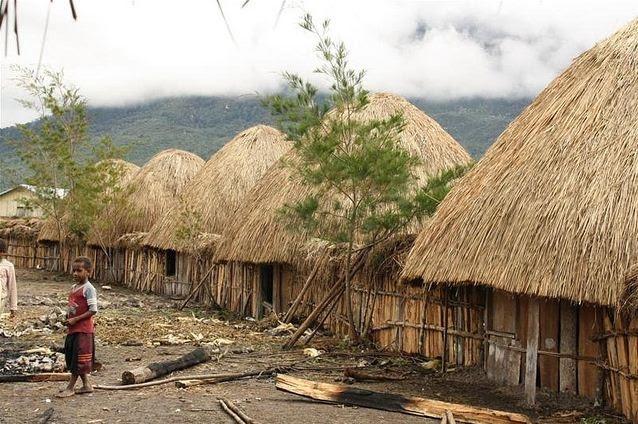 Type Of House Rumah Honai