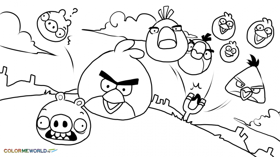 80 Angry Birds Seasons Coloring Pages  Images