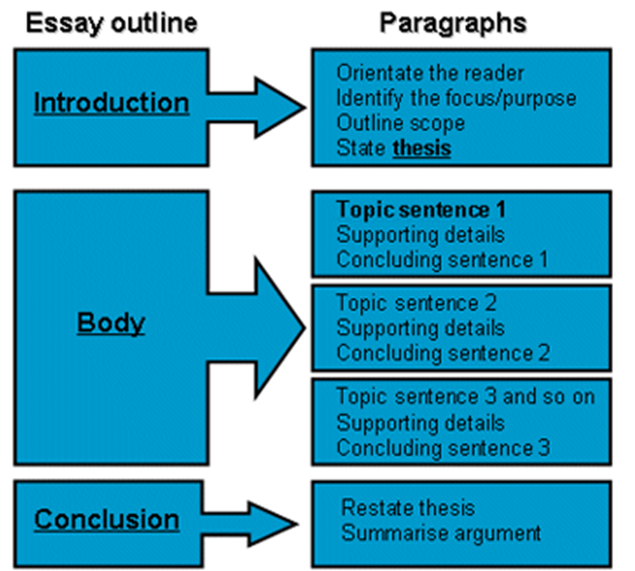 how to write a body paragraph in an essay
