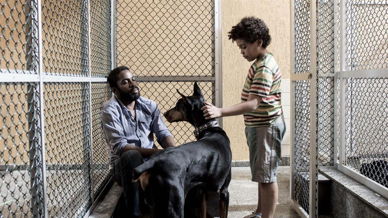 Mundo Cão : Foto