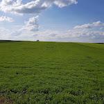 Le concept d'AgriLend essaime dans la Marne