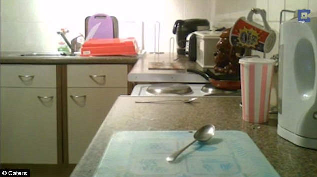 In another video taken by Ms Ayres a spoon begins moving around on her kitchen counter (pictured)