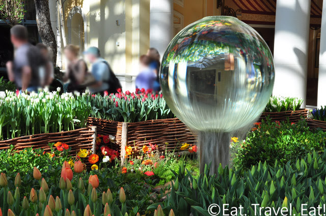 Water Globe Flower Picture 1