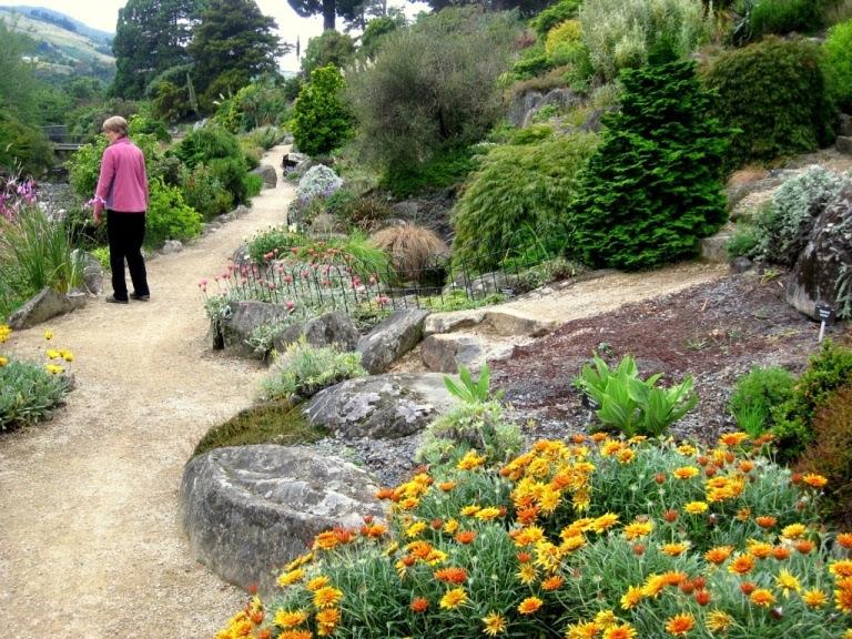 A New Zealand Inspired California Rock Garden Sierra Foothill Garden
