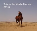 Trip to the Middle East and Africa