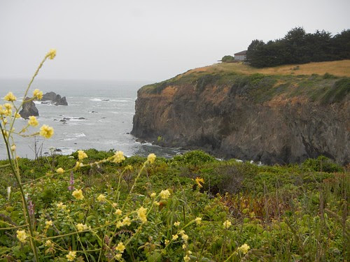Everyday for 7 Weeks - Day 36 - Brookings to Fort Bragg