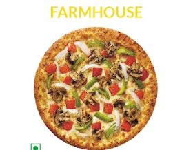 Domino S Pizza 4 Combo Pack Price