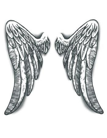 Angel Wings Temporary Tattoo Tattooednow Ltd