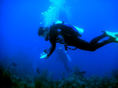 April-May 2013: Caribbean Adventure - Process