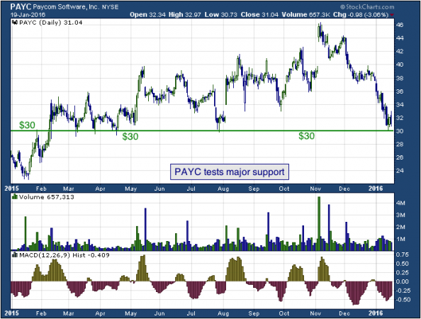 1-year chart of Paycom (NYSE: PAYC)