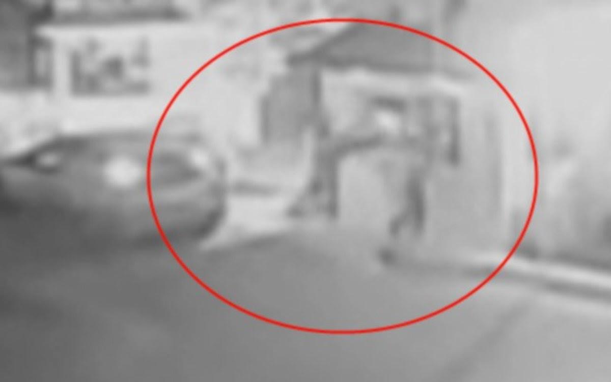 Εύβοια: Το βίντεο ντοκουμέντο της επίθεσης ληστών σε μεγάλη πτηνοτροφική μονάδα [vid]   Newsit.gr