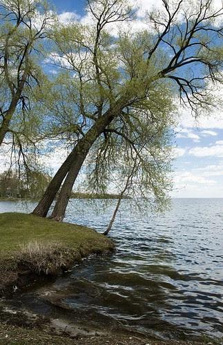 Orillia - Lake Simcoe from Kitchener Park