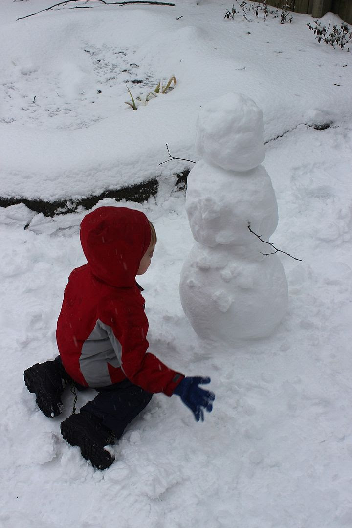 photo snow21_zpse61819b2.jpg