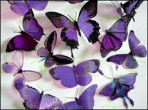 12 x Mixed Purple 3D Transparent Butterflies
