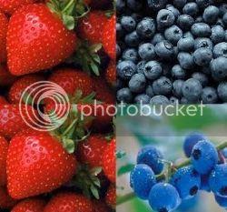 Makanan alami kaya antioksidan