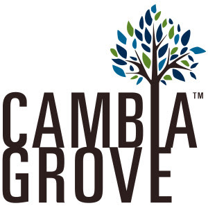 CambiaGrove_Brown