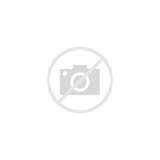Images of Bush Black Beans